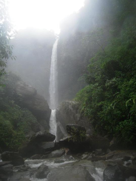 amazzonia1