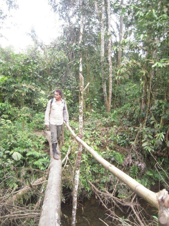 amazzonia2